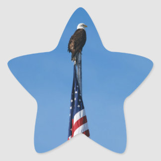 Bald Eagle and American Flag - sticker