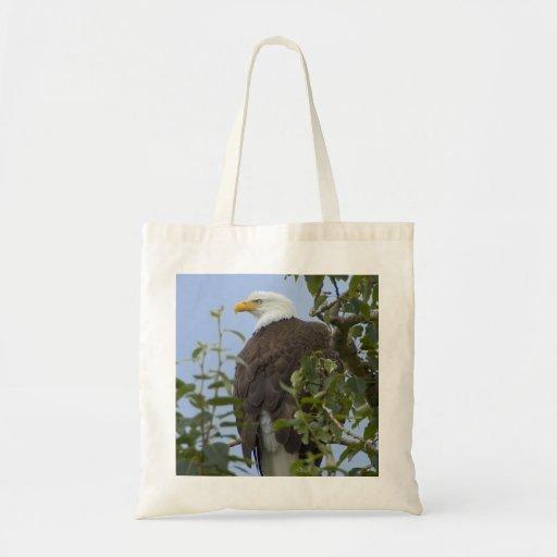 Bald eagle bag