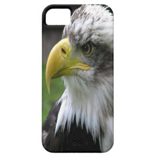 Bald Eagle Barely There iPhone 5 Case