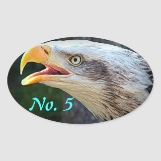 Bald Eagle Bin Stickers