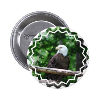 Bald Eagle Bird Button