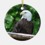 Bald Eagle Bird Ornament