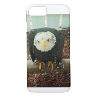 Bald Eagle Case