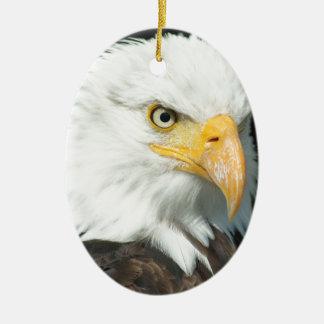 Bald Eagle Ceramic Oval Decoration