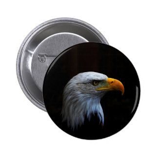 Bald Eagle copy.jpg 6 Cm Round Badge