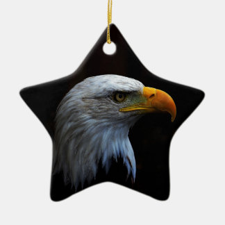 Bald Eagle copy.jpg Ceramic Star Decoration
