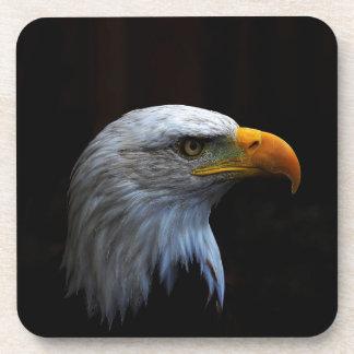 Bald Eagle copy.jpg Coasters