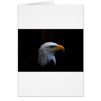 Bald Eagle copy.jpg Greeting Card