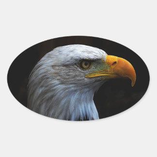 Bald Eagle copy.jpg Oval Sticker