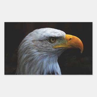 Bald Eagle copy.jpg Rectangular Sticker