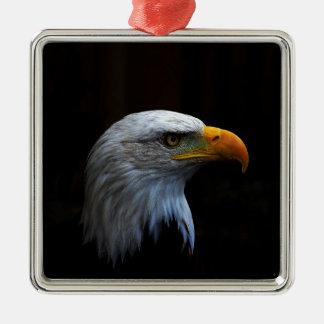 Bald Eagle copy.jpg Silver-Colored Square Decoration