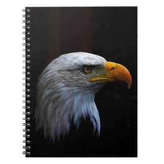 Bald Eagle copy.jpg Spiral Note Book