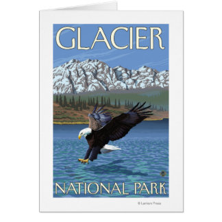 Bald Eagle Diving - Glacier National Park, MT Card
