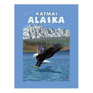 Bald Eagle Diving - Katmai, Alaska Postcards