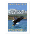 Bald Eagle Diving - Skagit Valley, Washington Postcard