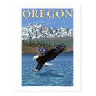 Bald Eagle Diving- Vintage Travel Poster Postcard