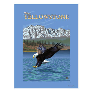 Bald Eagle Diving - West Yellowstone, MT Postcards
