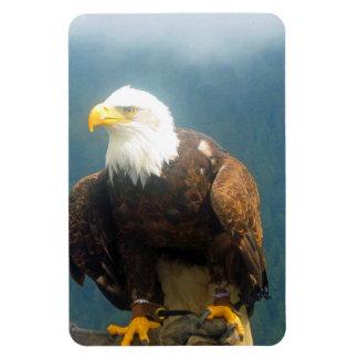 Bald Eagle Flexi Magnet