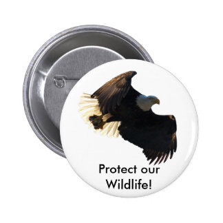 Bald Eagle Flight Collection II 6 Cm Round Badge