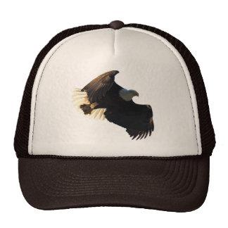 Bald Eagle Flight Collection II Mesh Hats