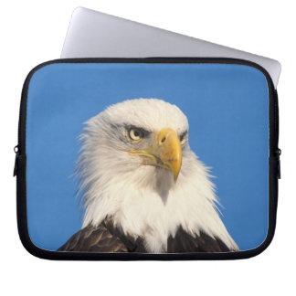 bald eagle, Haliaeetus leuccocephalus, 2 Laptop Sleeve