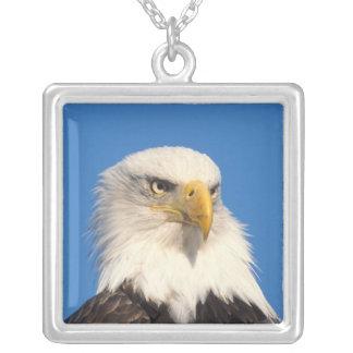 bald eagle, Haliaeetus leuccocephalus, 2 Silver Plated Necklace