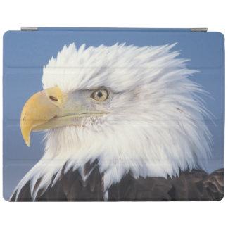 bald eagle, Haliaeetus leuccocephalus, iPad Cover