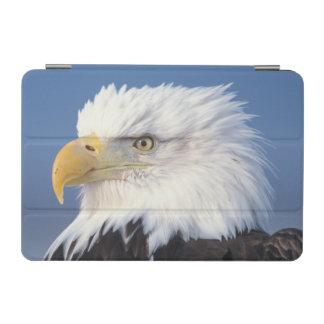bald eagle, Haliaeetus leuccocephalus, iPad Mini Cover
