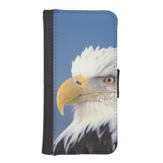 bald eagle, Haliaeetus leuccocephalus, iPhone SE/5/5s Wallet Case