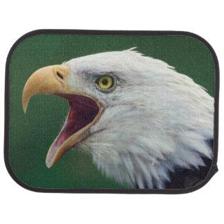 Bald Eagle (Haliaeetus leucocephalus) Car Mat
