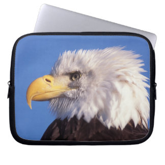 bald eagle, Haliaeetus leucocephalus, close up, 2 Laptop Sleeve