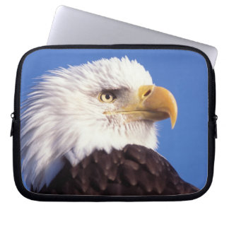 bald eagle, Haliaeetus leucocephalus, close up, 3 Laptop Sleeve