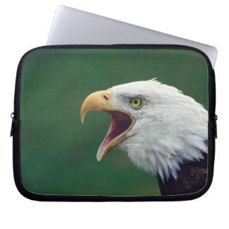Bald Eagle (Haliaeetus leucocephalus) Computer Sleeves