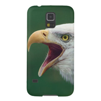 Bald Eagle (Haliaeetus leucocephalus) Galaxy S5 Covers