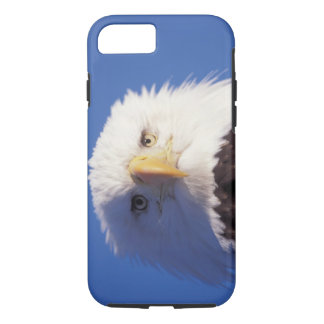 bald eagle, Haliaeetus leucocephalus, head shot, iPhone 8/7 Case