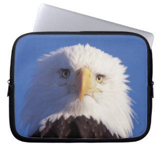 bald eagle, Haliaeetus leucocephalus, head shot, Laptop Sleeve