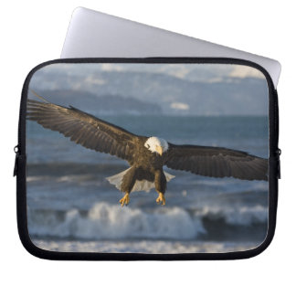 Bald Eagle, Haliaeetus leucocephalus, Homer, 3 Laptop Sleeve