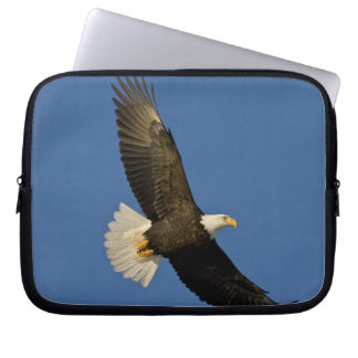 Bald Eagle, Haliaeetus leucocephalus, Homer, Laptop Sleeve
