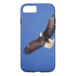 bald eagle, Haliaeetus leucocephalus, in flight 3 iPhone 8/7 Case