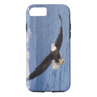bald eagle, Haliaeetus leucocephalus, in flight 4 iPhone 8/7 Case