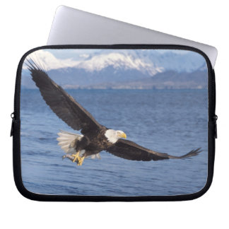 bald eagle, Haliaeetus leucocephalus, in flight 4 Laptop Sleeves