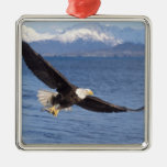 bald eagle, Haliaeetus leucocephalus, in flight 4 Silver-Colored Square Decoration
