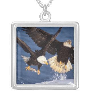 bald eagle, Haliaeetus leucocephalus, taking off Silver Plated Necklace
