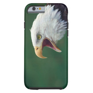 Bald Eagle (Haliaeetus leucocephalus) Tough iPhone 6 Case