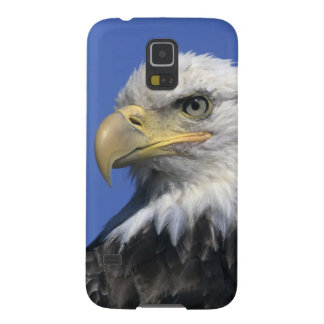 Bald Eagle, (Haliaeetus leucocephalus), wild, Case For Galaxy S5