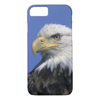 Bald Eagle, (Haliaeetus leucocephalus), wild, iPhone 8/7 Case