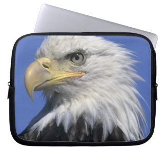 Bald Eagle, (Haliaeetus leucocephalus), wild, Laptop Sleeve