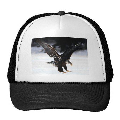 Bald Eagle Trucker Hats