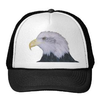 Bald Eagle Mesh Hats
