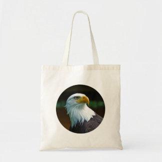 Bald Eagle Head 001 02.1.2 rd
